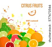 citrus fruits in the corner.... | Shutterstock .eps vector #577673566