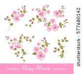 set of sakura flowers elements. ... | Shutterstock .eps vector #577680142