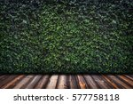 backdrop of green leaves wall... | Shutterstock . vector #577758118