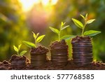 Money Growing Concept Business...