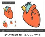 human heart vector line icon... | Shutterstock .eps vector #577827946