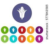 corncob set icons in different... | Shutterstock . vector #577843585