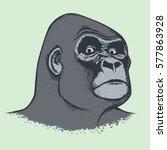 vector monkey concept. hand... | Shutterstock .eps vector #577863928