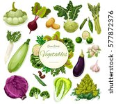 green vegetable and bean... | Shutterstock .eps vector #577872376