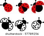 ladybird symbol and sign