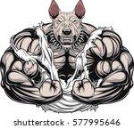 vector illustration of a strong ... | Shutterstock .eps vector #577995646