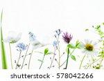 summer flowers | Shutterstock . vector #578042266