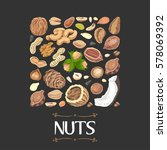 isolated square of nuts and... | Shutterstock .eps vector #578069392