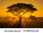 silhouette of the elephant... | Shutterstock . vector #578093236