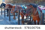 horses at station 5  mount fuji ... | Shutterstock . vector #578100706