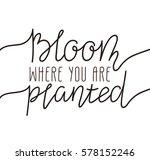 hand written lettering   bloom... | Shutterstock .eps vector #578152246