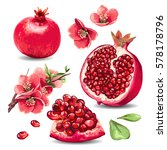 fruit pomegranate and pink... | Shutterstock .eps vector #578178796