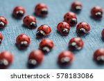 A Group Of Wooden Ladybugs....