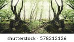 creative symmetrical forest... | Shutterstock . vector #578212126