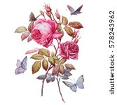 roses. botanical illustration.... | Shutterstock . vector #578243962