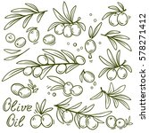 set of graphic hand drawn olive ... | Shutterstock .eps vector #578271412