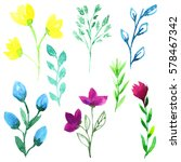 set plants. watercolor... | Shutterstock . vector #578467342