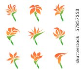 tropical flowers. elements for... | Shutterstock .eps vector #57857353