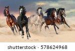 Horse Herd Run Gallop On Deser...