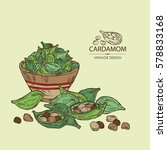 background with cardamom. hand...   Shutterstock .eps vector #578833168