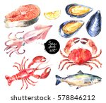 watercolor hand drawn seafood... | Shutterstock . vector #578846212