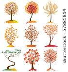 9 Highly Detailed Autumn Trees