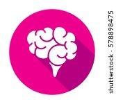 brain   Shutterstock .eps vector #578898475