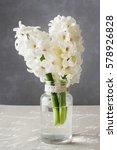 white hyacinths in glass vase   Shutterstock . vector #578926828