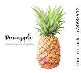 watercolor pineapple. hand... | Shutterstock . vector #578983912
