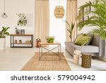 well lighted flat interior with ... | Shutterstock . vector #579004942