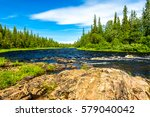 Forest River Panoramic Landscape