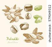 pistachios. hand drawn sketch | Shutterstock .eps vector #579049312