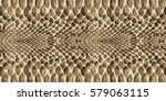 snake skin pattern texture... | Shutterstock .eps vector #579063115