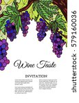 a vector template  vine with... | Shutterstock .eps vector #579160036