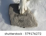 dog remembers a lost pet friend | Shutterstock . vector #579176272