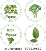 organic. stickers on white... | Shutterstock .eps vector #579219652