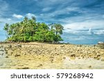 Deserted Ocean Shore With Palm...
