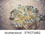 brooch in a shape of a flower... | Shutterstock . vector #579271882