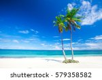 tropical beach with coconut palm | Shutterstock . vector #579358582