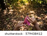 Small photo of Children afforest back to nature.