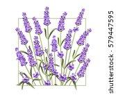 elegant card with lavender...   Shutterstock .eps vector #579447595