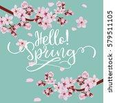spring season background  pink... | Shutterstock .eps vector #579511105
