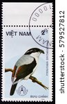 Small photo of MOSCOW, RUSSIA - FEBRUARY 12, 2017: A stamp printed in Vietnam shows Pteruthius erythropterus or red-winged shrike babbler, series devoted to the birds, circa 1986