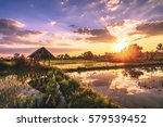 Small photo of Acreage for rice farming in sunset