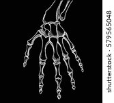 skeleton hand vector. sketch... | Shutterstock .eps vector #579565048