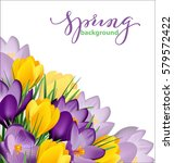 spring background with blooming ... | Shutterstock .eps vector #579572422