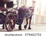 Horse and a beautiful old carriage in old town.