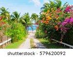 caribbean  island of nevis | Shutterstock . vector #579620092