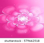 a flickering flower in the... | Shutterstock . vector #579662518