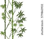 green bamboo seamless vertical... | Shutterstock .eps vector #579863932